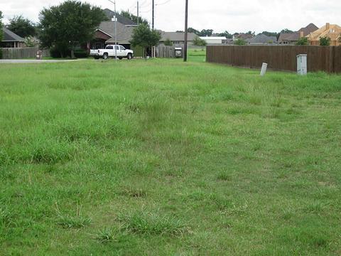 3819 Margaret St, Needville, TX 77461