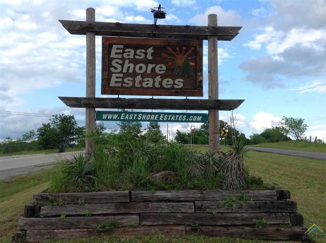 Lot 91 N LakeviewTroup, TX 75789