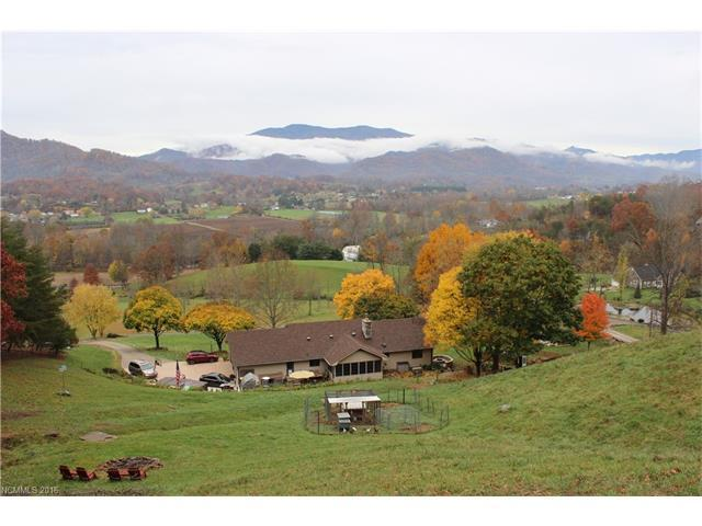 190 River Point Rd, Canton, NC