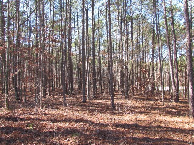 1021 Jackson Rdg #58, Greensboro, GA 30642