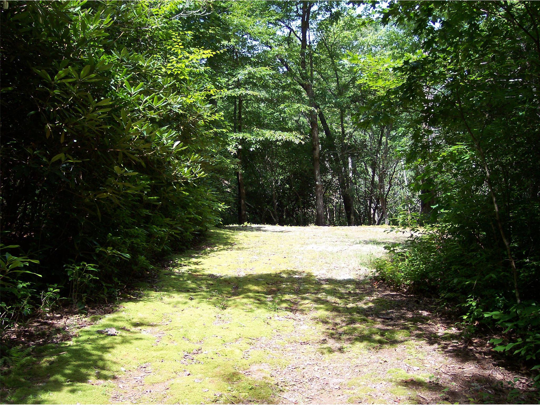 0 W Pond #210, Rabun Gap, GA 30568