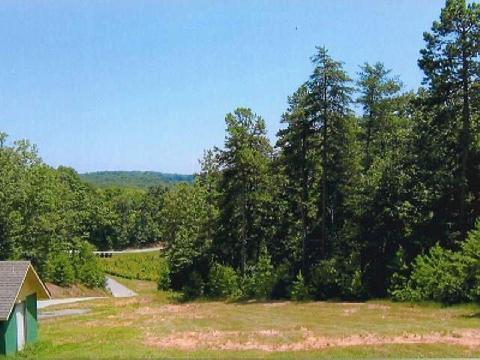 1604 Mountain Sweet, Clarkesville, GA 30523