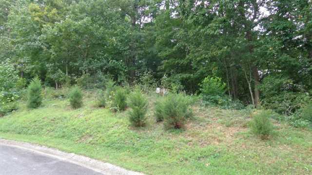0 Wildwood Pkwy #LOT 6, Dahlonega, GA 30533