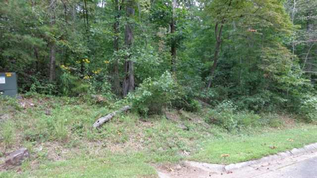 0 Wildwood Pkwy #LOT 11, Dahlonega, GA 30533