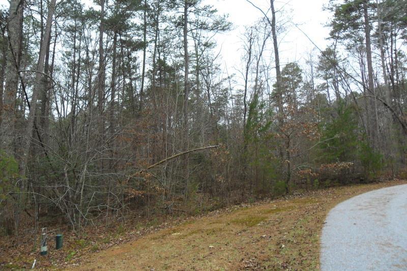 1319 Red June Lane, Clarkesville, GA 30523