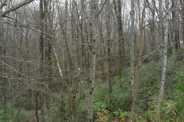 158 Raspberry Ln #158,159, Clarkesville, GA 30523