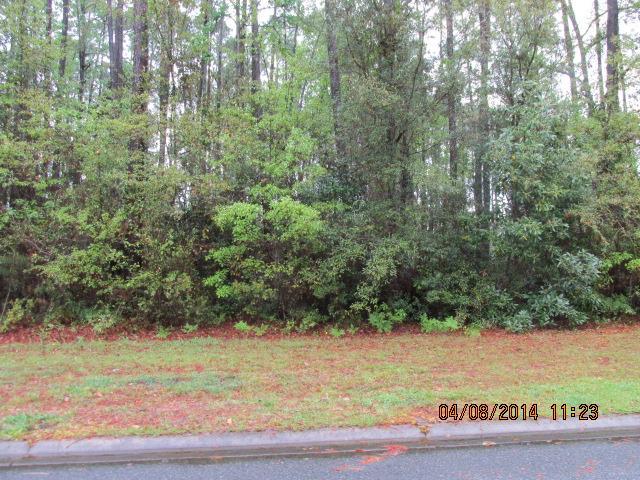 0 Harbor View Drive #LOT 19, Woodbine, GA 31569