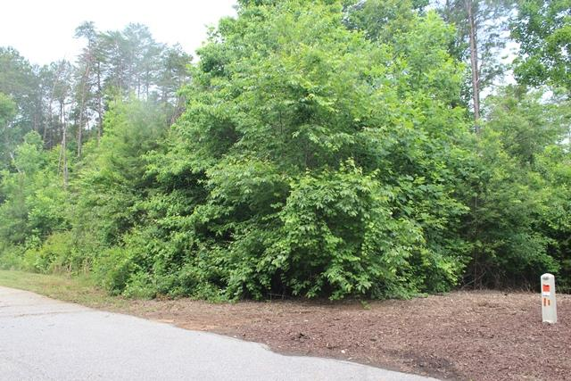 41 Edgewater Trail #38D, Toccoa, GA 30577