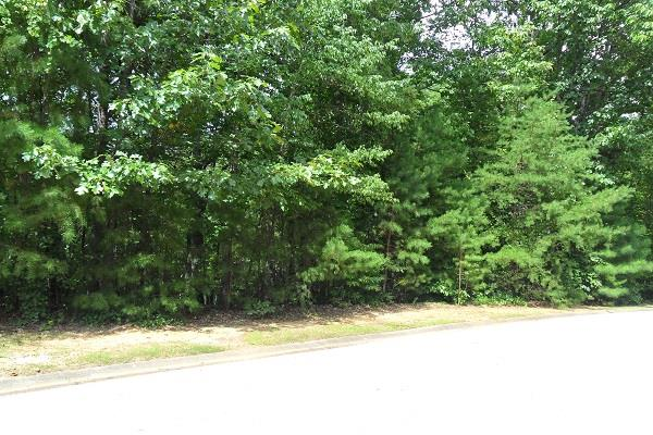 753 Plum Lane #LT 753, Clarkesville, GA 30523