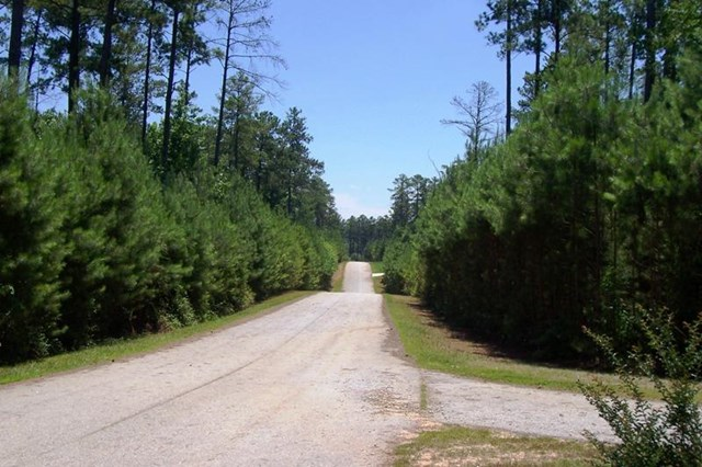 0 Melody Point #LOT 16, Hartwell, GA 30643