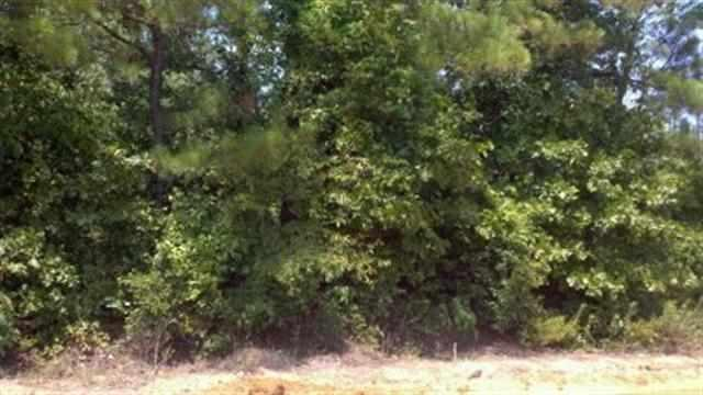 0 Tribble Rd #LOT 14, Fort Valley, GA 31030