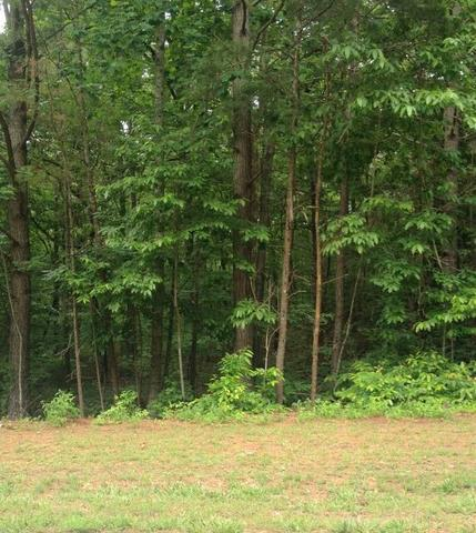 0 River Bend Rd #LOT 49, Dawsonville, GA 30534