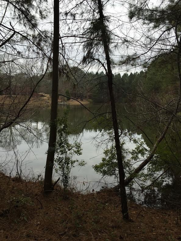 01 Green Road, Loganville, GA 30052