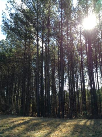 616 Shepherds Xing #LOT 23, Oxford, GA 30054