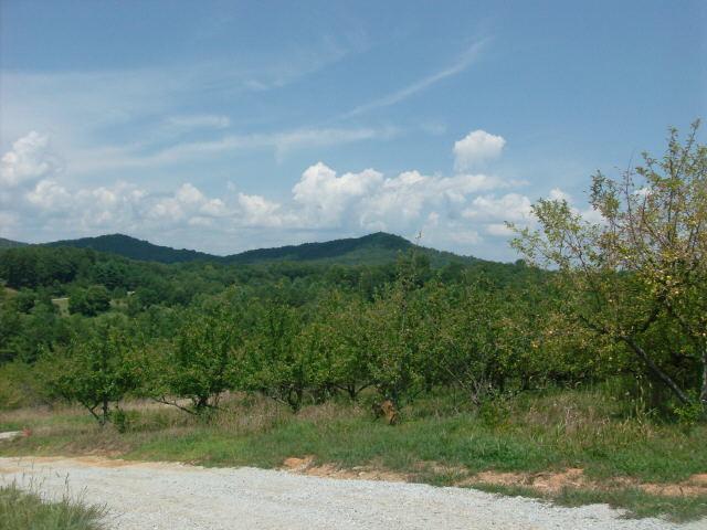 0 Orchard View Ln #TR 3, Lakemont, GA 30552