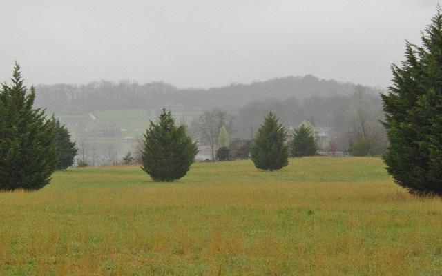 9 Bell Creek Cv, Hiawassee, GA 30546
