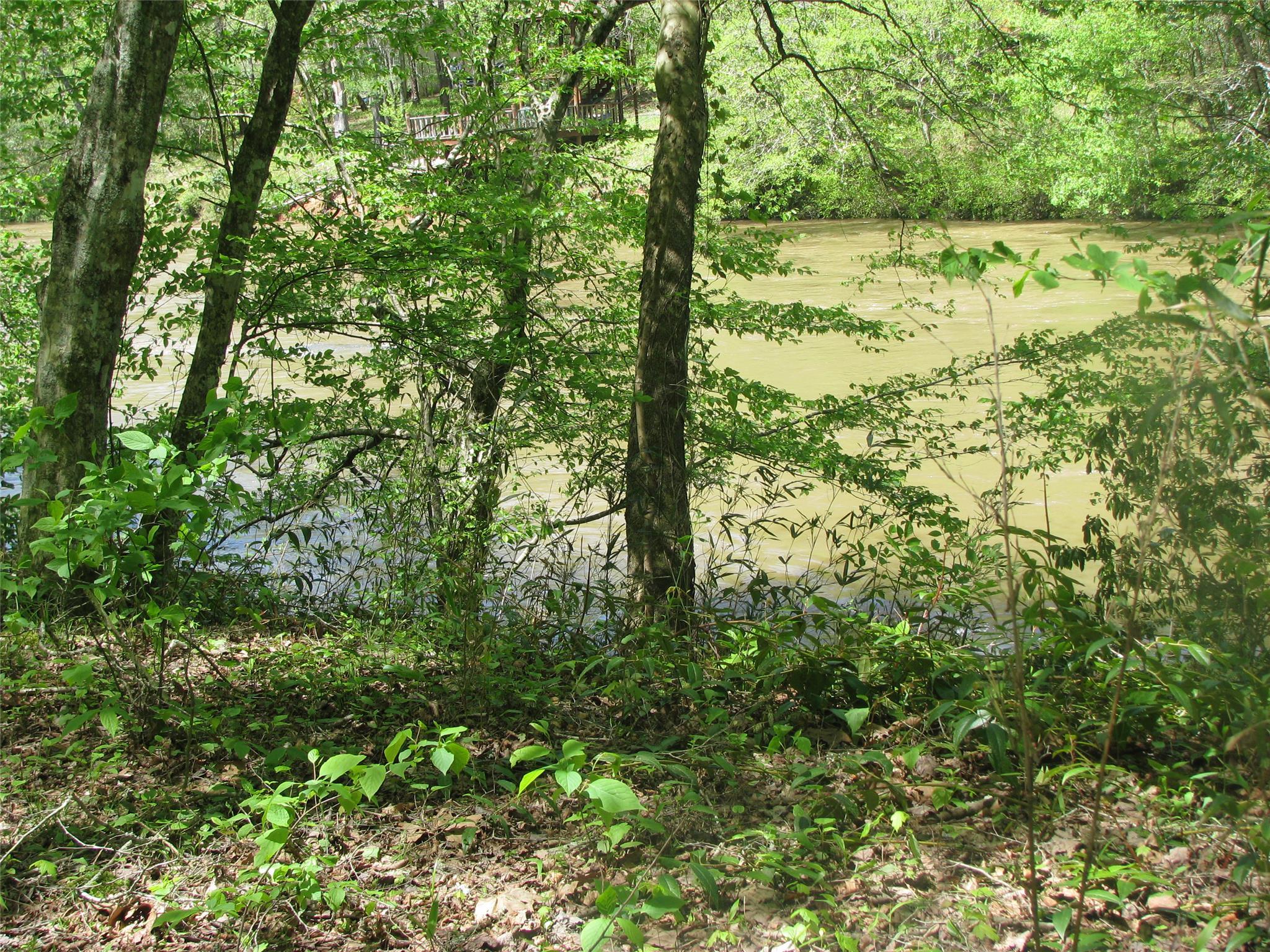 0 River Run Trail #19 & 20, Cornelia, GA 30531