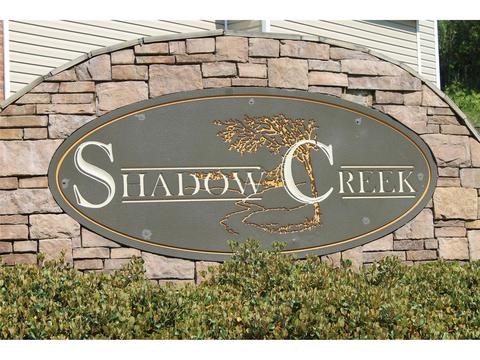 11152 Shadow Creek Ter, Hampton, GA 30228