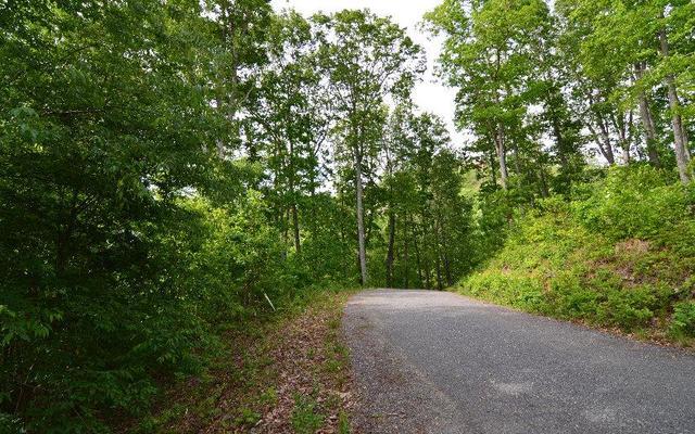 0 Overlook At Bell Mdws #40, Hiawassee, GA 30546