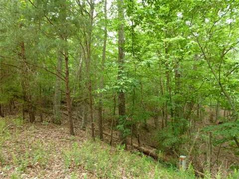 0 Emerald Springs Ln, Ellijay, GA 30540