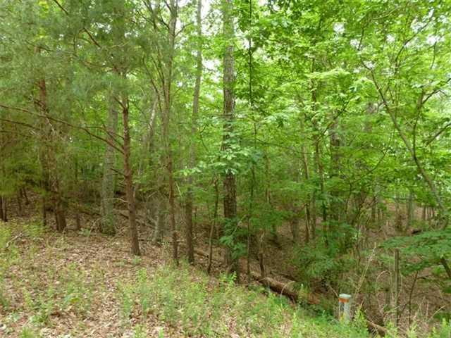 0 Emerald Springs Ln #24, Ellijay, GA 30540