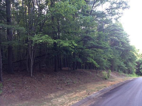 454 Yates Cir, Clarkesville, GA 30523