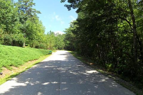 1612 Duchess Ln, Clarkesville, GA 30523