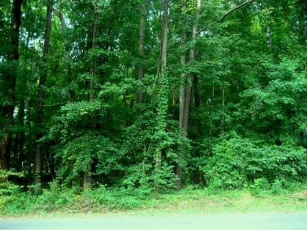 221 Crooked Creek Road #LOT 221, Eatonton, GA 31024