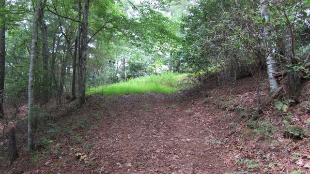 0 Mt View Ln #4, Clarkesville, GA 30523