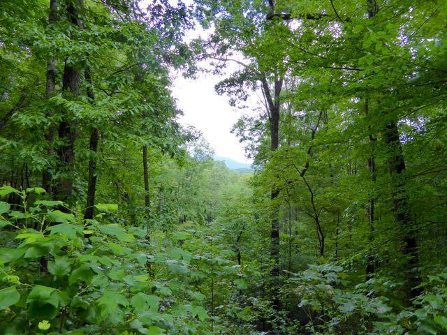 0 Shadow Mountain Dr #32, Dillard, GA 30537