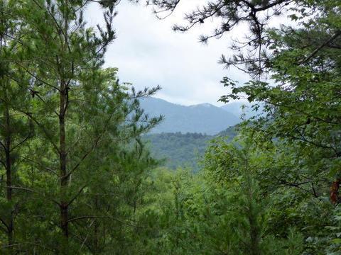 0 Shadow Mountain Dr, Dillard, GA 30537