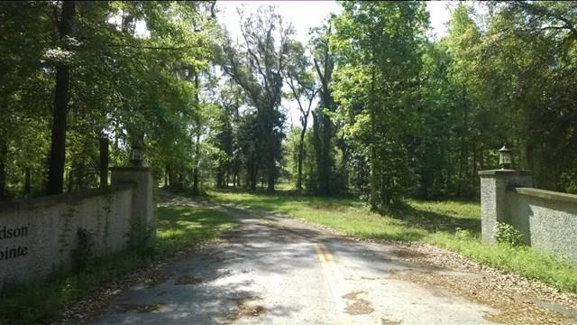 0 Highway 99, Meridian, GA 31319
