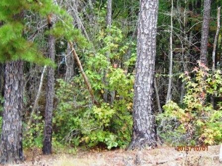 0 S Grayson Trail, Hogansville, GA 30230