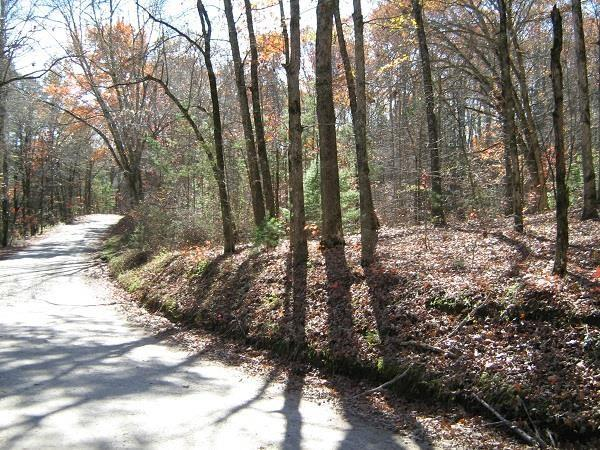 0 Bear Gap Rd, Clarkesville, GA 30523