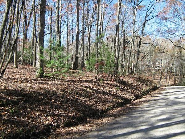 0 Bear Gap Road, Clarkesville, GA 30523