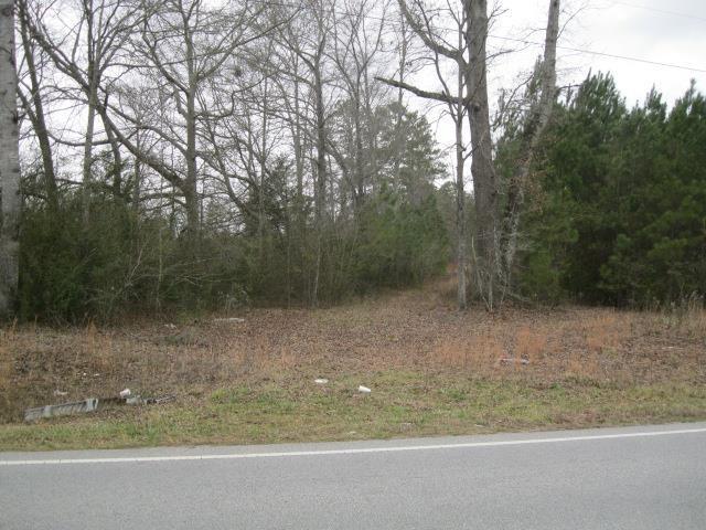0 Rocky Crk #175, Hampton, GA 30228