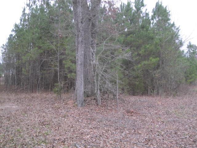 0 Rocky Creek #175, Hampton, GA 30228