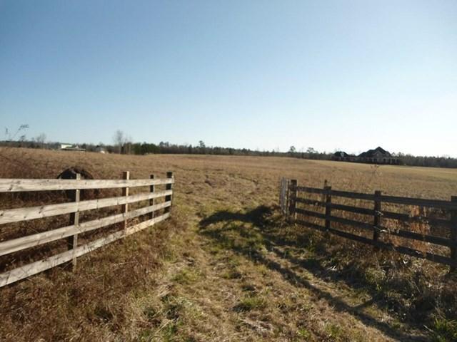 0 Yatesville Hwy #9.33AC, Thomaston, GA 30286