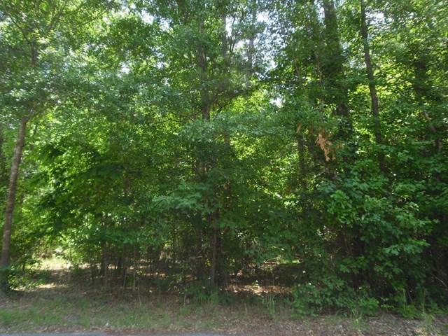 0 Kingswood Lane, Fayetteville, GA 30215