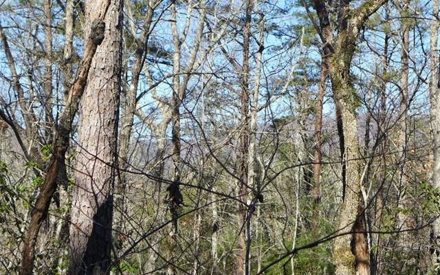 0 Woodbrier #BB-11, Sautee Nacoochee, GA 30571