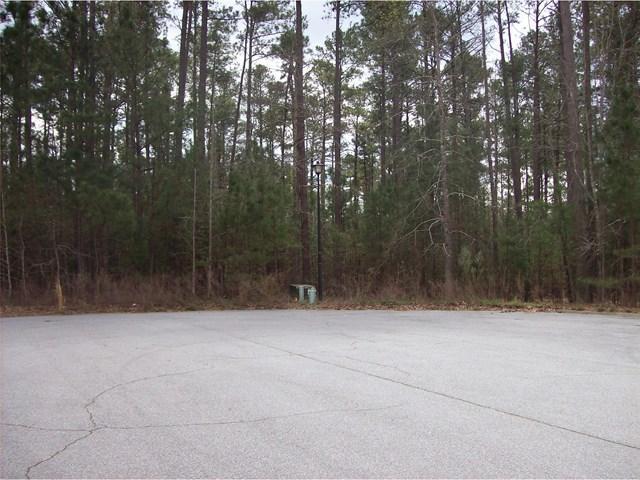 12122 Edgewater Dr #15, Hampton, GA 30228