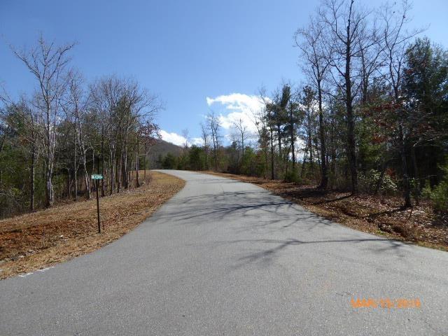 0 Fodder Creek Mill #36, Hiawassee, GA 30546