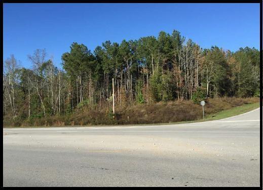 161 Wolfcreek Drive, Mcdonough, GA 30253