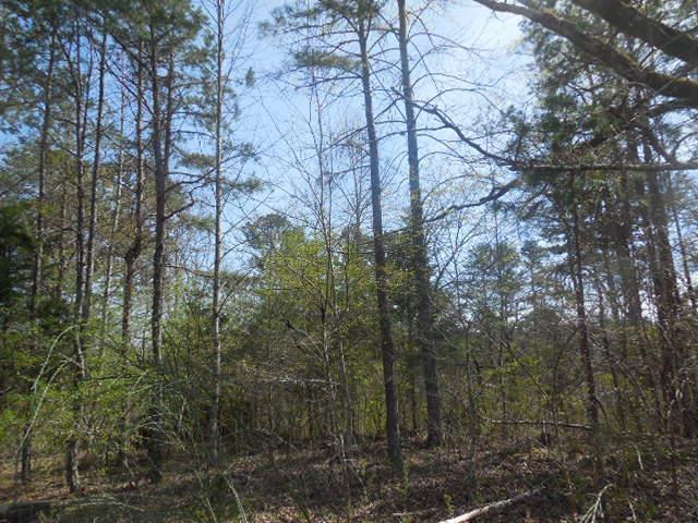 0 Lakemont Trail #36, Demorest, GA 30535