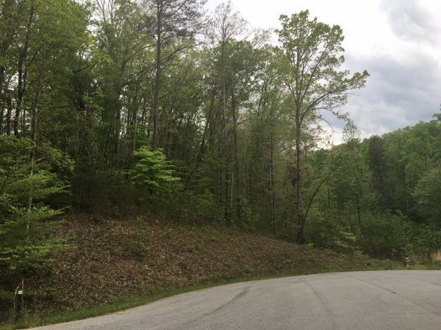 0 Trails Of Long Mtn #12, Cleveland, GA 30528