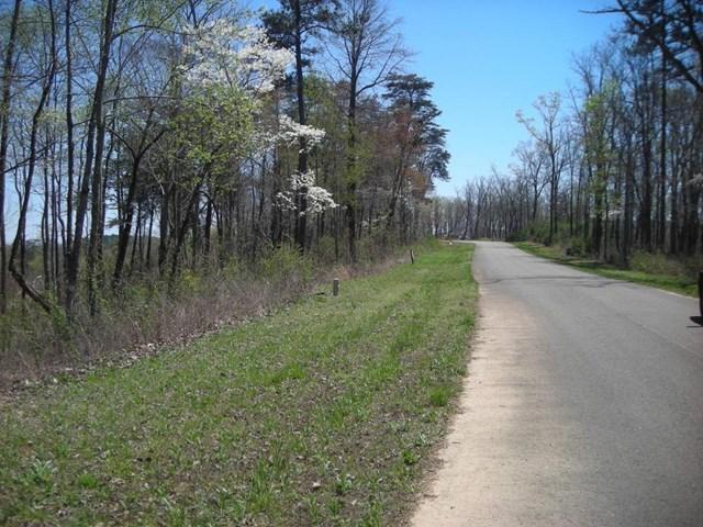 0 Ridgeline Road #19, Talking Rock, GA 30175