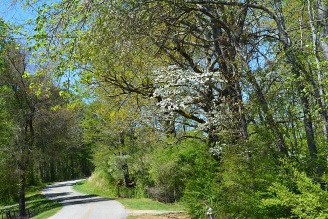 0 Hollywood Hills Road #143 O13A, Clarkesville, GA 30523