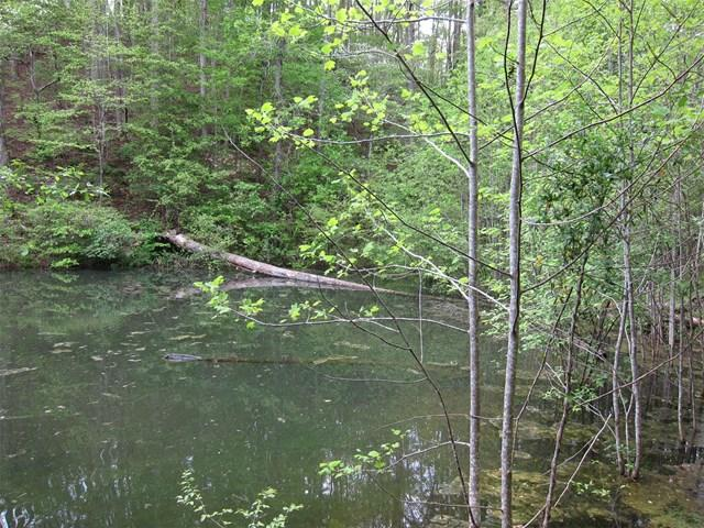 0 River Bridge Trl #10, Cornelia, GA 30531