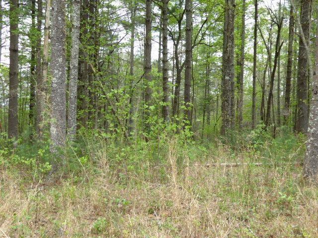0 Pleasant Meadows #62, Blairsville, GA 30512