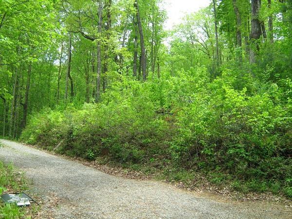 9 Buck Run #7,8,9, Clarkesville, GA 30523